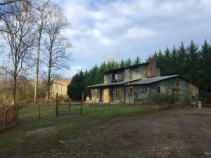 The Table Rock Dog Resort